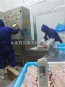 新型微波海鱼虾解冻设备