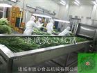 FX-1000韭菜专用清洗机