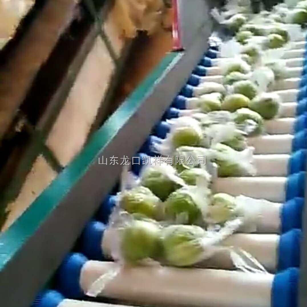 青枣分选机水果选果机厂家供应接受预定