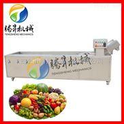 TS-X300-【特价促销】油麦菜清洗设备 大白菜清洗机 气泡式臭氧洗菜机