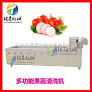 TS-X300-震撼特价促销洗菜机 臭氧杀菌洗菜机 柑橘清洗机