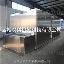 水饺隧道式速冻机