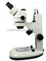 三目体视显微镜