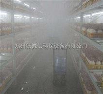 杏鲍菇增湿设备