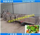 供应3500型鼓泡果蔬清洗机 洗菜机价格