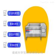 HBMS-1800型胡萝卜清洗机-商用多功能洗菜机