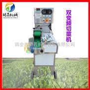 TS-Q115-卷心菜包菜切丝机 黄瓜切片机 原装进口 电动高效 操作简单