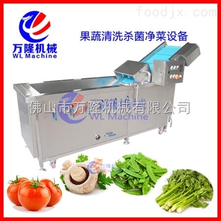 *多功能氣泡式洗菜機