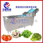 果蔬清洗杀菌净菜设备 智能洗菜机 清洗除杂