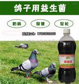 山东养鸽子预防拉稀哪个品牌效果好