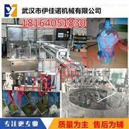 伊佳諾YJN-ZLD-2吸嘴袋洗衣液灌裝旋蓋機