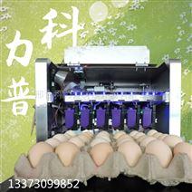 微型全自动鸡蛋喷码机小型设备