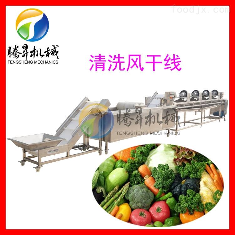 果蔬清洗流水线 净菜加工生产线 清洗风干线