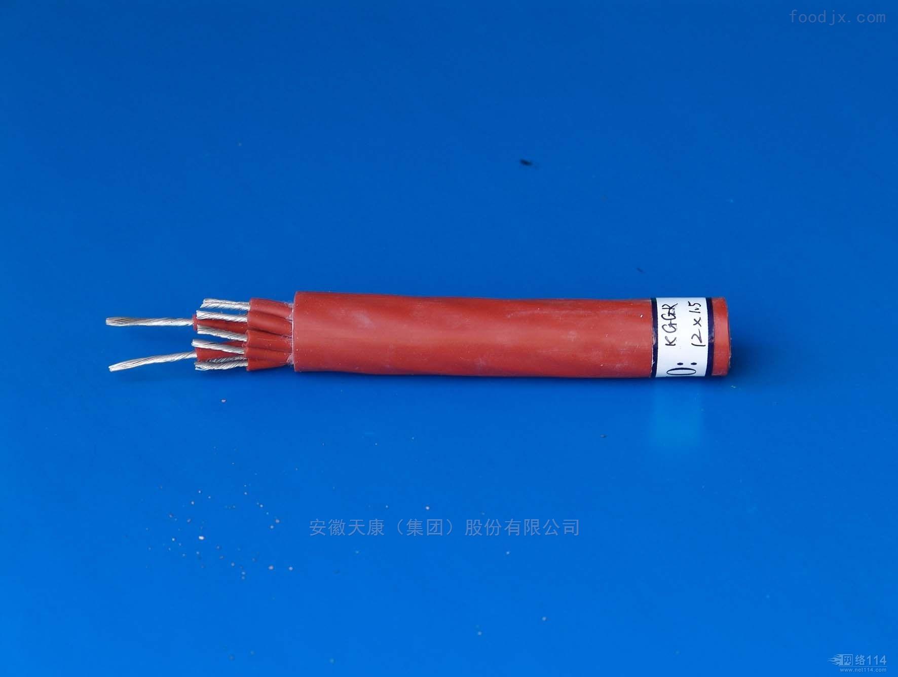 DJFGP 计算机电缆1*2*1.0