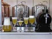 酒店精酿啤酒发酵设备