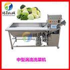 TS-X220腾昇机械专业生产订做涡流洗菜机