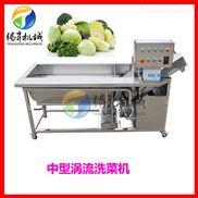 腾昇供应新品涡流式2.2米洗菜机 超声波洗豆芽机 TS-X220速度快