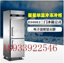 D500E2-G高身雪柜