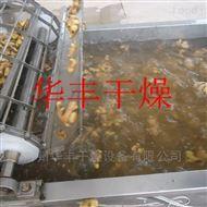 DWT生姜片脱水蔬菜干燥机/竹笋烘干设备