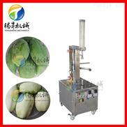 菠萝去皮机 自动瓜果去皮设备