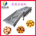 厂家供应全不锈钢瓜果水果分选生产线