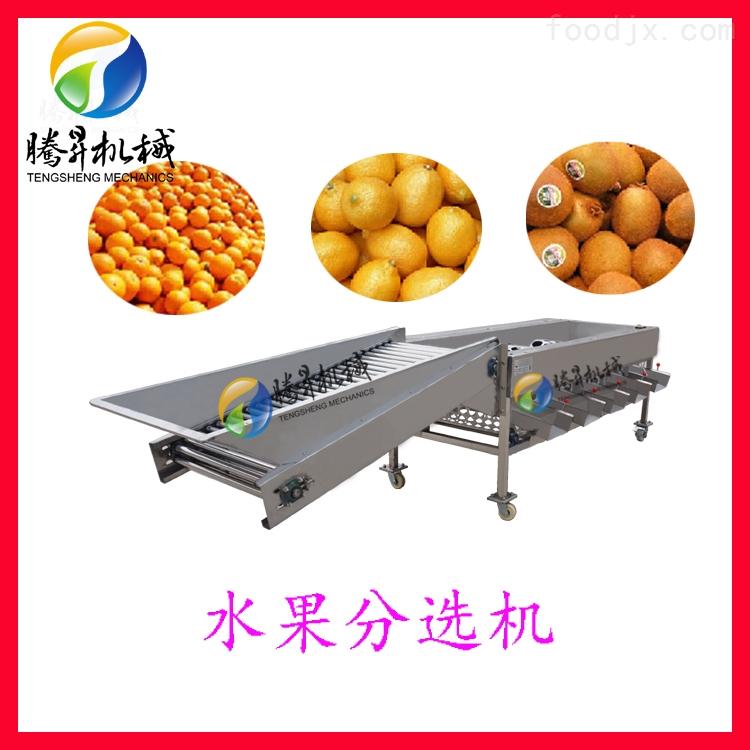 滚筒式选果机 圆形水果橙子柑桔分级机