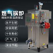 蒸汽发生器锅炉全自动燃气煤气锅炉