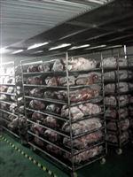 HT-TJKG5T大块冻牛肉低温高湿缓化解冻库
