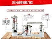 雅大家庭酿酒设备不锈钢