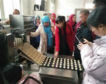 厂家推荐全自动撒芝麻桃酥机 饼干成型机