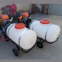 手推式配长管电机动力喷洒杀虫剂消毒剂