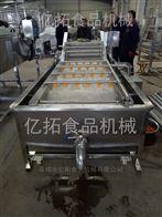 YT—800香菇清洗机