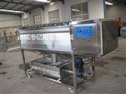 YT—1500-玉米毛辊清洗机