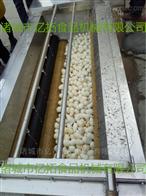 YT—1500洋芋头清洗机