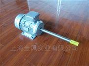 加长轴电机/可定做非标电机