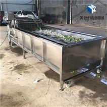 蔬菜网链式气泡清洗机