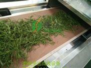 工业微波烘干设备应用于茶叶烘干的优势