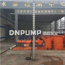 高扬程深井潜水泵小口径