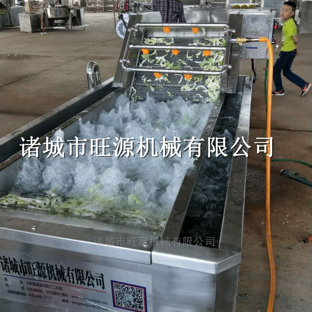 网带式蔬菜清洗机