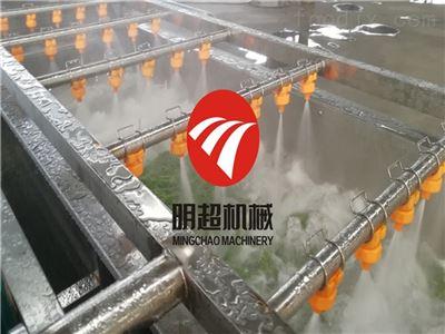 冲浪式红枣清洗机提高工作效率