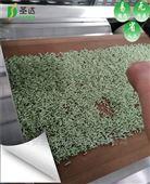 大型厂家猫砂干燥机烘干机微波干燥设备