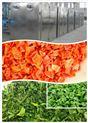HT-530-果蔬热泵烘干房,蔬菜烘干机,豆角干燥设备