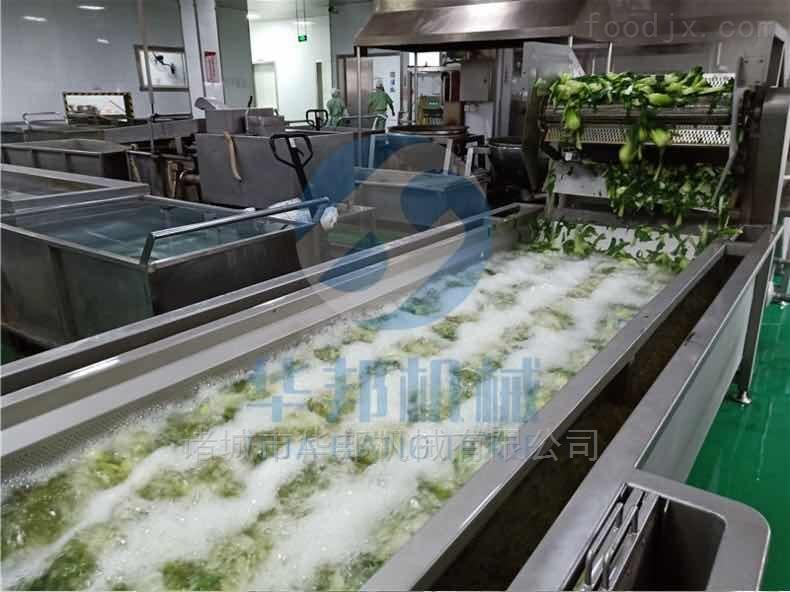 新鲜芸豆高压气泡清洗设备 专业气泡洗菜机