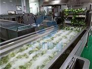 华邦机械 蔬菜清洗机 水果清洗设备 厂家