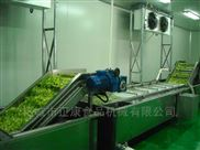 全自动蔬菜辊筒清洗机