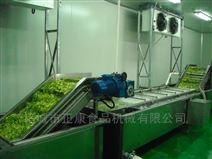 小型全自动蔬菜辊筒清洗机