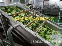 果蔬漂烫机 玉米蒸煮机  预煮机华邦机械