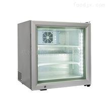 杭州55升台式冷冻展示柜冷冻冰柜