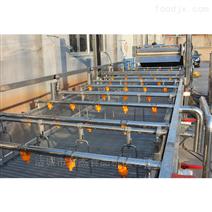 中药材清洗生产线果蔬自动清洗流水线价格