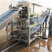 芦笋龙须菜清洗机 海产品专用清洗设备